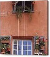 Plants On Window Sill Canvas Print