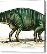 Plateosaurus Engelhardti, A Prehistoric Canvas Print