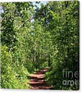 Pleasant Trail Canvas Print