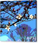 Plum Tree Blossom Canvas Print