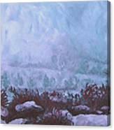 Pogonip Canvas Print
