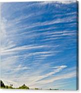 Point No Point With Driftwood Canvas Print