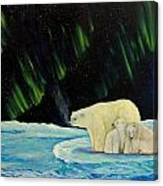 Polar Cinema Canvas Print