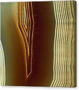 Polished Slice Of Agate Canvas Print