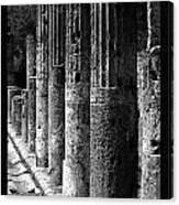 Pompeii Columns Black And White Canvas Print