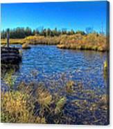 Pond 1 Today.psd Canvas Print