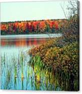Pond In The Woods In Autumn Canvas Print