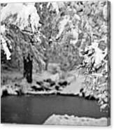 Pond Mystere Canvas Print