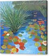 Pond Revisited Canvas Print