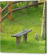 Pondering Bench Canvas Print