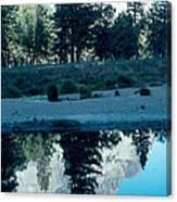 Ponderosa Reflections Canvas Print