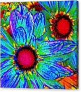 Pop Art Daisies 2 Canvas Print