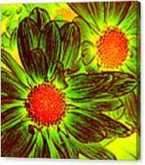Pop Art Daisies 5 Canvas Print