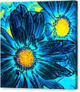 Pop Art Daisies 7 Canvas Print