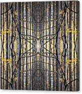 Poplar Cathedral Canvas Print