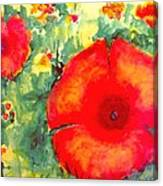 Poppies Face To The Sun Canvas Print