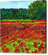 Poppy Fields Tuscany Canvas Print
