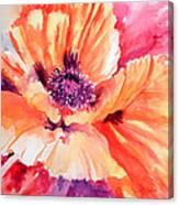 Poppy Fiesta Canvas Print