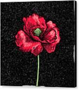 Poppy Flower, Woodcut Canvas Print