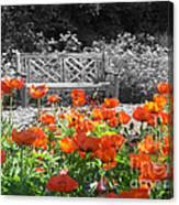 Poppy Seed Bench Canvas Print