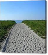 Popular Beach Path Canvas Print