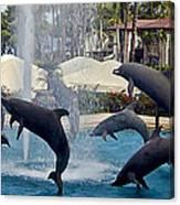 Porpoise Statues   Maui Hawaii Canvas Print
