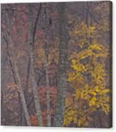 Portrait Of Autumn Canvas Print