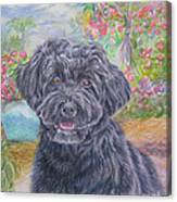 Portuguese Water Dog Canvas Print