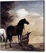 Potter: Horses, 1649 Canvas Print