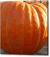 Pounds Of Pumpkin  Fun Canvas Print