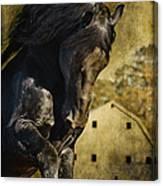 Power House Horse Canvas Print