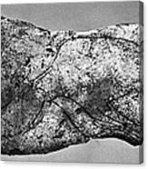 Prehistory: Engraving Canvas Print