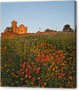 Presidio La Bahia 3 Canvas Print