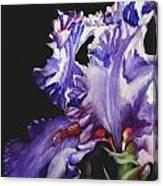 Pretty In Purple Canvas Print