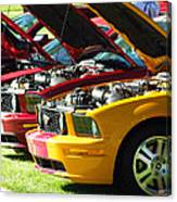 Pretty Mustangs In A Row Canvas Print