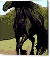 Prince Of Equus Canvas Print