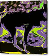 Prowling Canvas Print