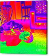 Psychedelic Doggy Love Canvas Print