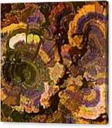Psychedelic Fungi Canvas Print