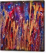 Psychodelia Canvas Print