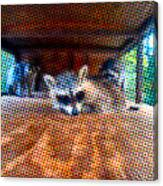 Psycodelic Furries Canvas Print