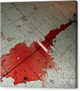 Puddle Of Red Wine On The Floor Canvas Print