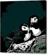 Puffin Love Canvas Print