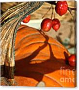 Pumpkin Berries Canvas Print