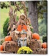 Pumpkin Harvest 2012 Canvas Print