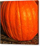 Largest Pumpkin Canvas Print