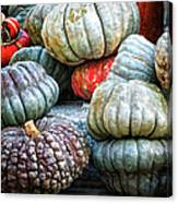 Pumpkin Pile II Canvas Print