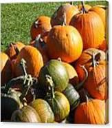 Pumpkin Pile  Canvas Print