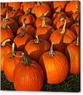 Pumpkin Strike Canvas Print