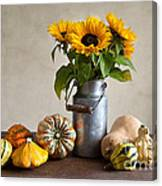 Pumpkins And Sunflowers Canvas Print